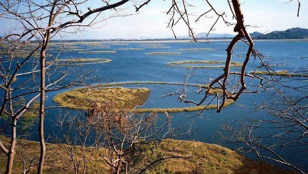 Danau Ajaib di India, Pulaunya Bisa Gerak Sendiri