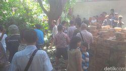 Potong Pohon Sukun, Sudar Tewas Tersengat Listrik
