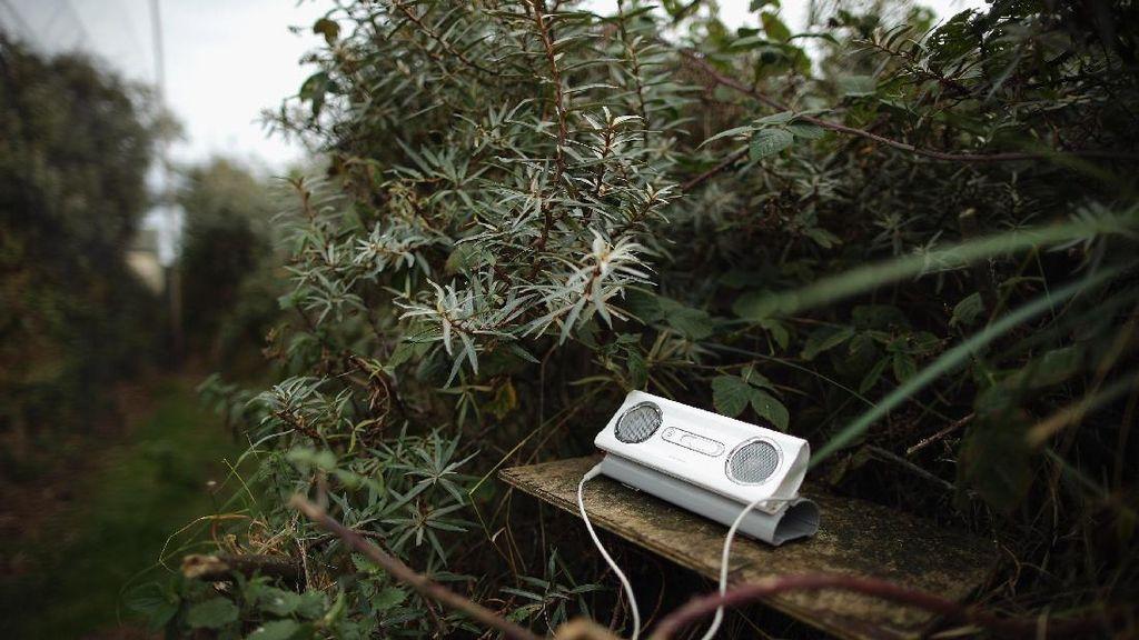Benarkah Format AAC Lebih Baik Dibanding MP3?