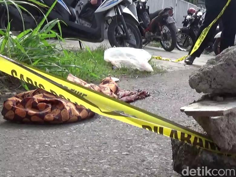 Jasad Bayi Digigit Anjing Gemparkan Cihideung Tasikmalaya