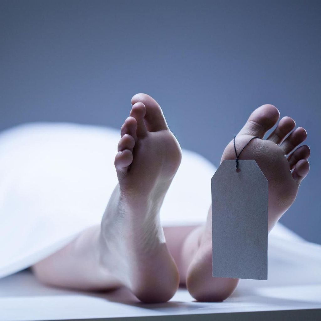 8 Mayat Ditemukan dalam Truk yang Diparkir di Texas