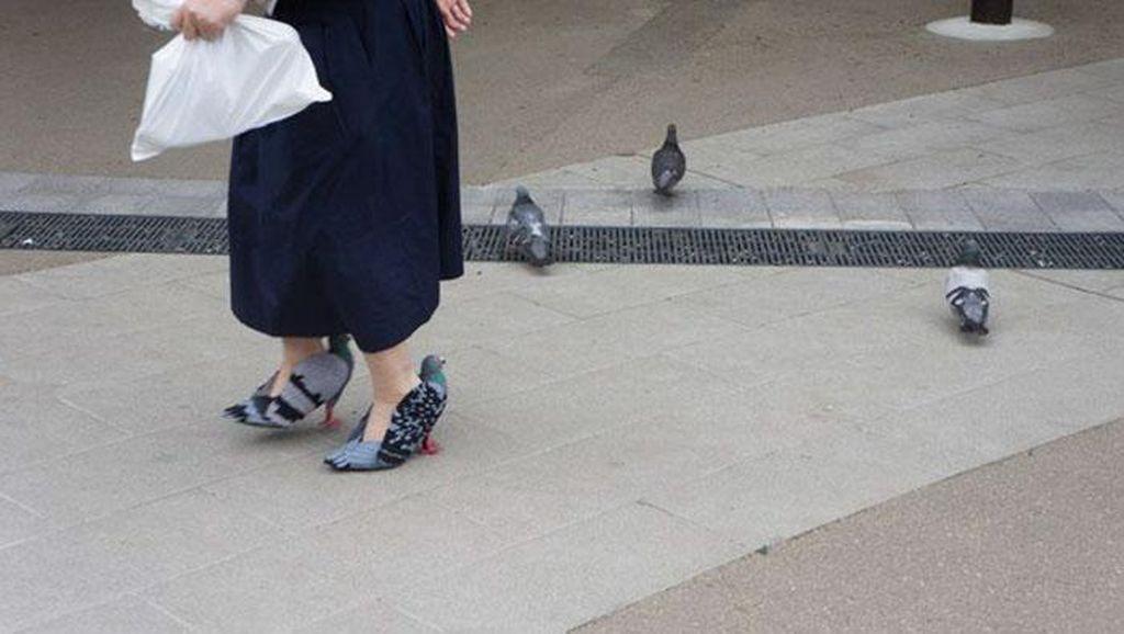 Wanita Ini Curi Perhatian Karena Pakai Burung Merpati di Kakinya