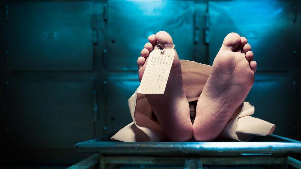 Wanita Bunuh Diri Di Apartemen Moritz Loncat Sambil Bawa Surat
