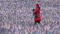 Kenang Korban Perang, Taman Boston Dihiasi 37 Ribu Bendera