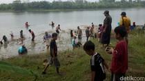 Ngabuburit sambil Kumbohan, Berburu Ikan Mabuk di Bengawan Solo