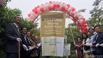 Ada Megawati Garden di Jeju Korsel, Hari Ini Diresmikan