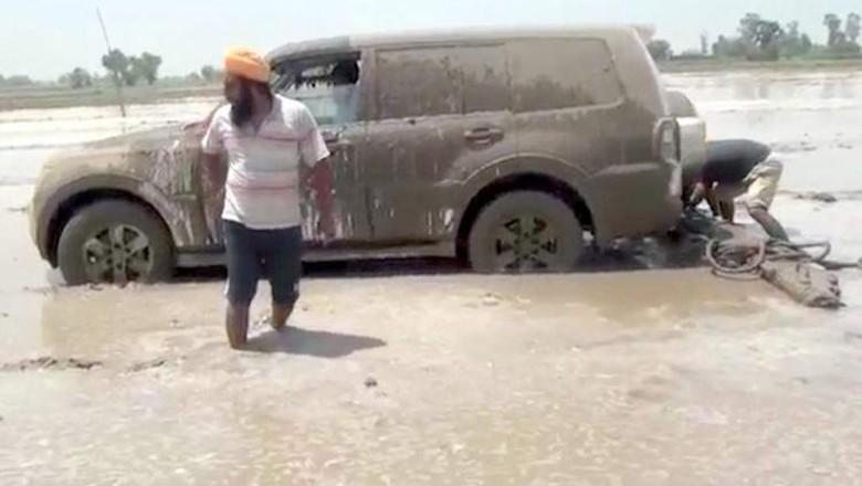 Viral! Mobil SUV Dipakai Buat Membajak Sawah