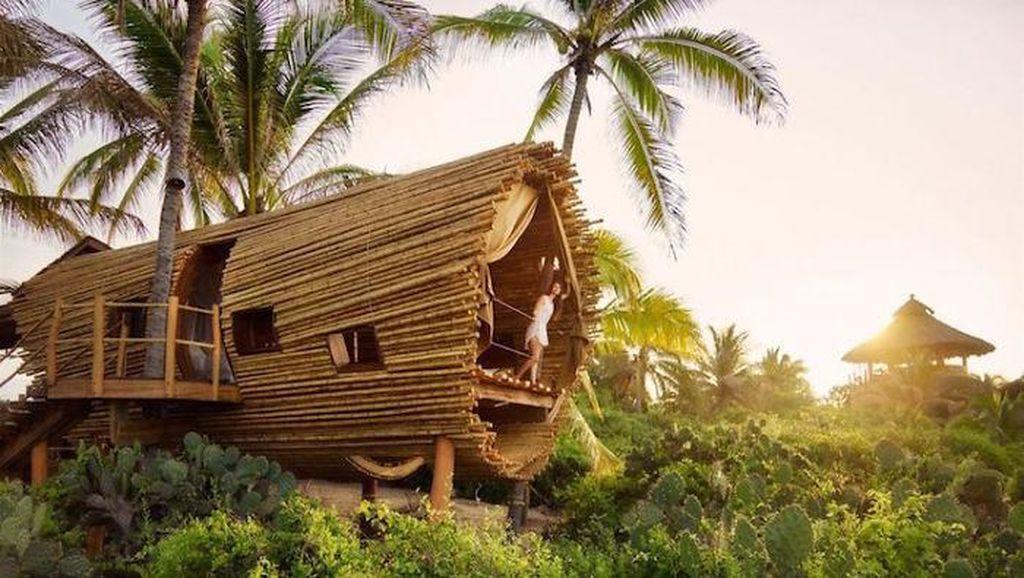 Rumah Pohon Bertenaga Matahari