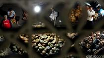 Ramadan, Denyut Nadi Pasar Induk Kramat Jati Tak Pernah Mati