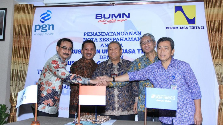 Duet PGN-PJT II Bangun Infrastruktur Pangan Hingga Energi
