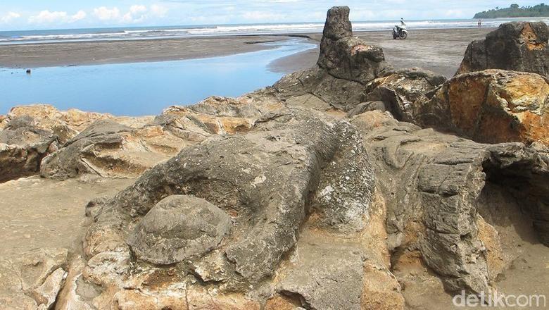 Foto: Batu Malin Kundang di Padang yang terkenal (Hesti/detikTravel)