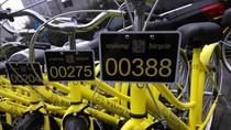 Startup Penyewaan Sepeda Ini Banyak Dimaling Akhirnya Bangkrut