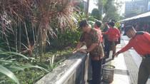 Sambut Pemudik, Wali Kota Semarang Bersihkan Simpang Lima