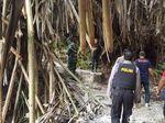 WN Jerman Hilang saat akan Mendaki Gunung Sibayak