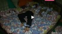 Geger Video Tidur di Atas Uang Rp 1 Miliar, Ini Penjelasan Kades Nono