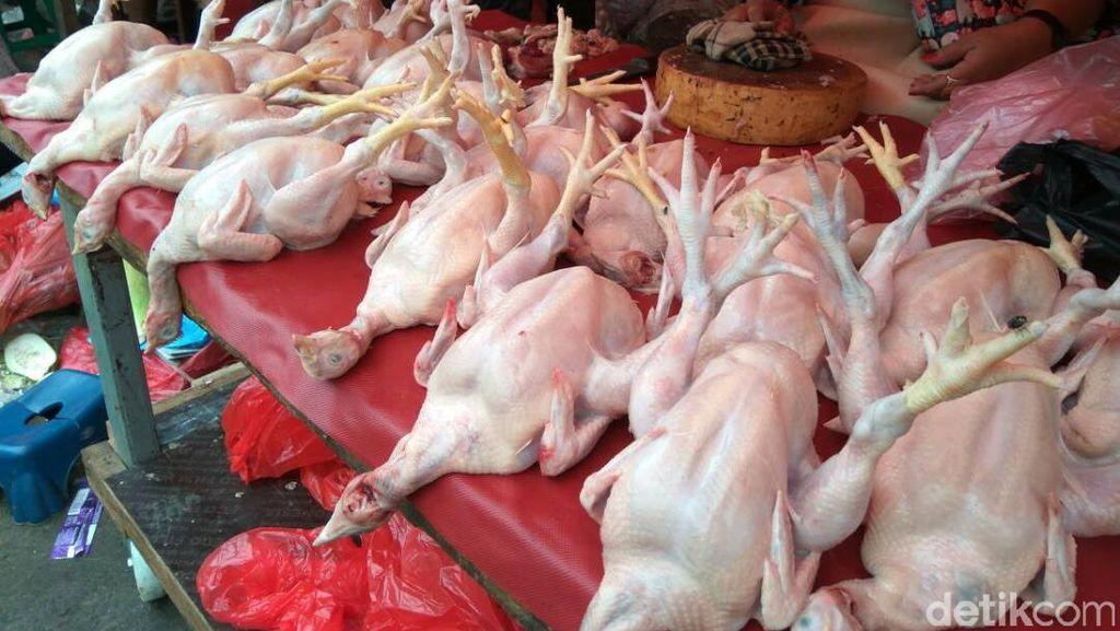 Pedagang Pasar Kebayoran: Harga Ayam Rp 35.000/Ekor