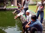 Terapi Ikan di Masjid Iqro Garut Segarkan Pemudik