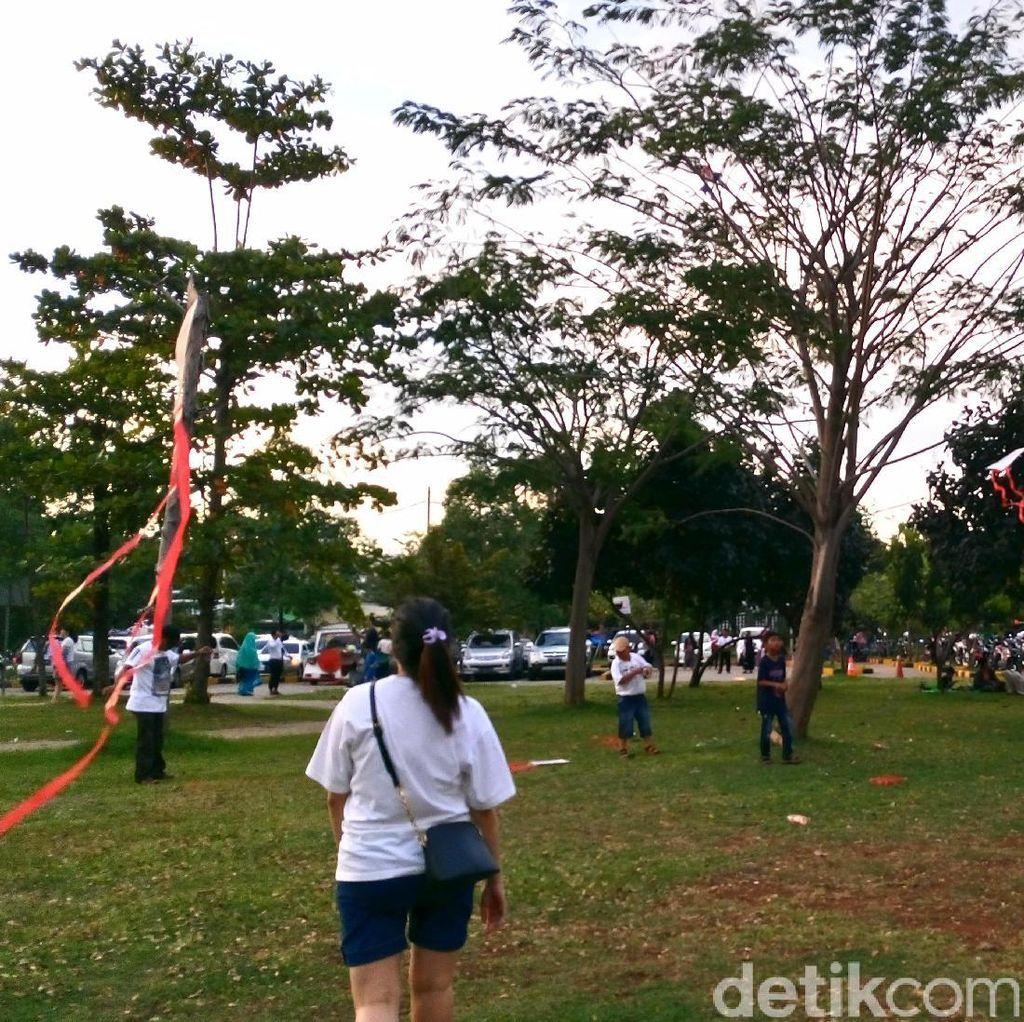 Melihat Serunya Warga Bermain Layang-layang di Taman Waduk Pluit