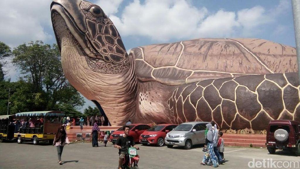 Wahana Kura-kura Masih Jadi Daya Pikat Pantai Kartini Jepara