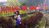 Pesona Kamojang Hill Bridge yang Jadi Tempat Favorit Pemudik Berfoto