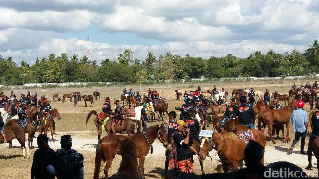 Jelang Parade 1001 Kuda Sumba, Kadispar NTT: Persiapan Sudah Oke!