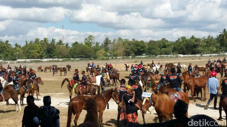 Foto: Ilustrasi Parade 1.001 Kuda Sandelwood (Petrus Ola/detikTravel)