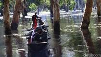 Patroli Bersama Tentara Penjaga Perbatasan RI-PNG di Rawa-rawa Papua