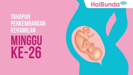 Tahapan Perkembangan Kehamilan: Minggu ke-26