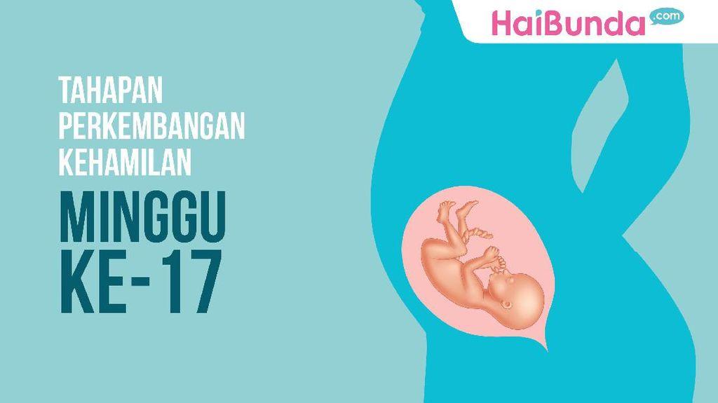 Tahapan Perkembangan Kehamilan: Minggu ke-17