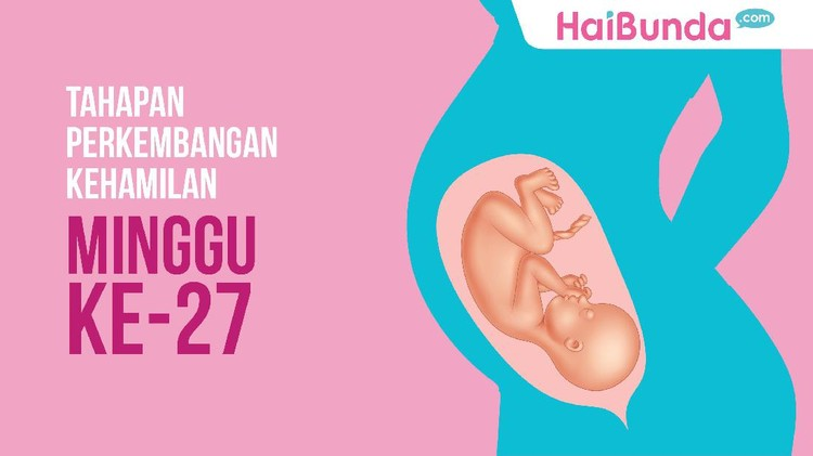 Tahapan Perkembangan Kehamilan: Minggu ke-27