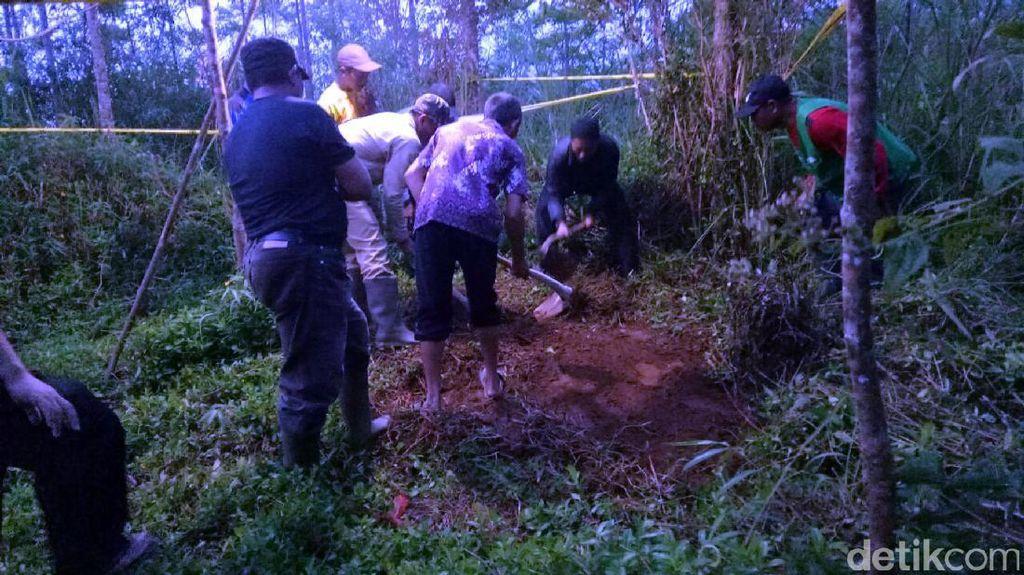Ini Lokasi Perkebunan Tempat Koko Dikubur Penculik
