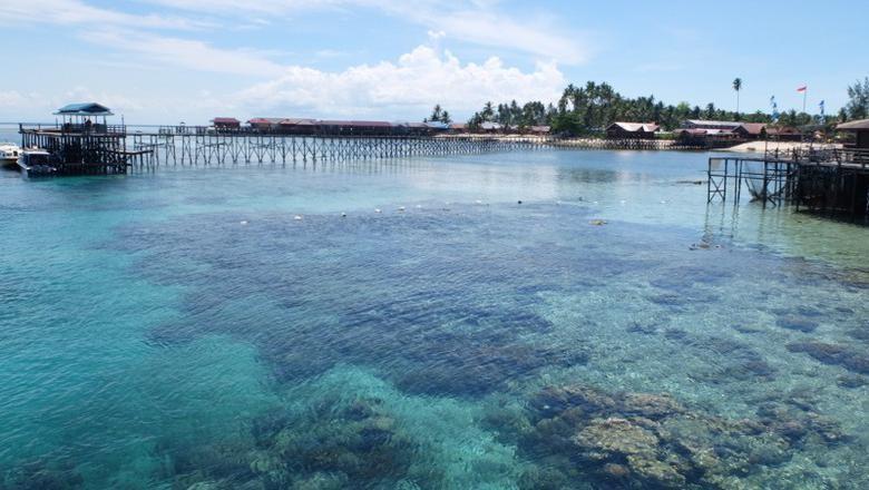 Ilustrasi Kepulauan Derawan (Afif/detikTravel)