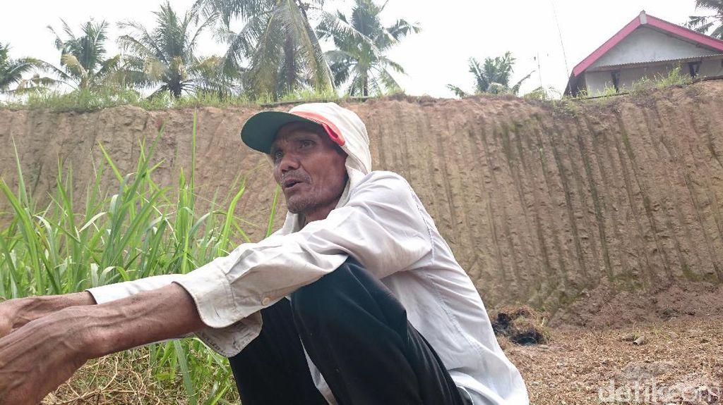 Kisah Warga Cilegon Bertani di Lahan Bekas Tambang Pasir