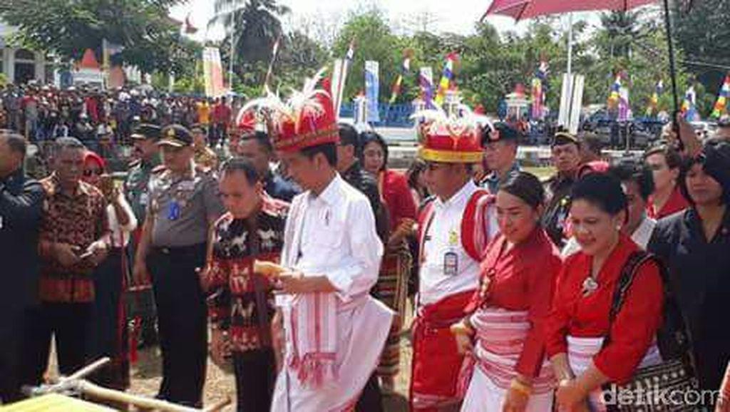 Datang ke Sumba, Jokowi Kepincut Kuda Sandelwood dan Tenun Ikat