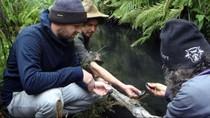Cemari Sungai, Perusahaan Tambang Australia Didenda Rp 10 Miliar