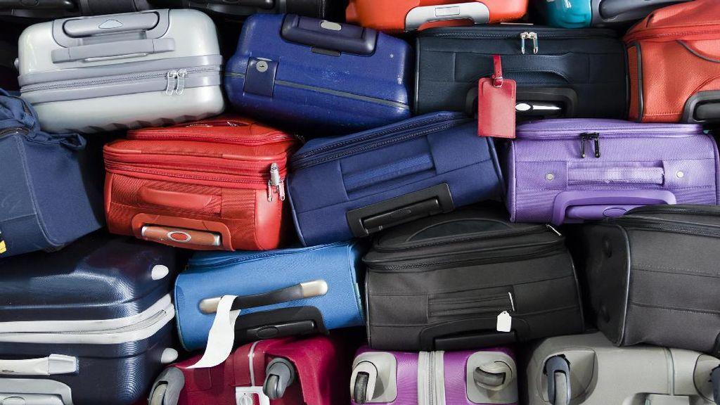 Puluhan Turis Pulang ke Brisbane, Eh Kopernya Ketinggalan di Bali