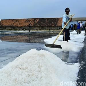 KKP: Bulan Ini Ada Panen 55.000 Ton Garam