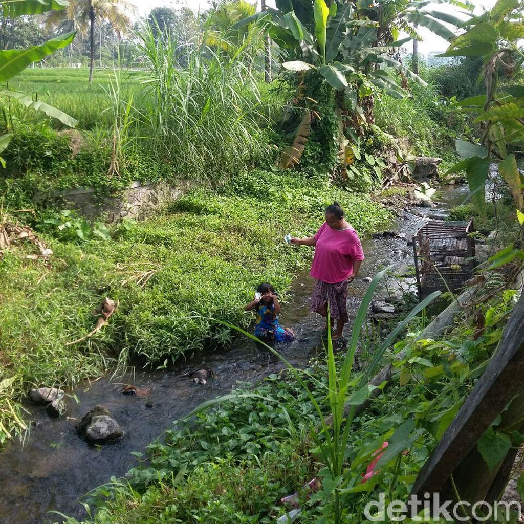143 KIS Ditemukan di Sungai, Puskesmas Gandusari: Kartunya Aktif