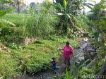 Ini Sungai di Blitar Tempat Ditemukan 143 Kartu KIS Warga Surabaya