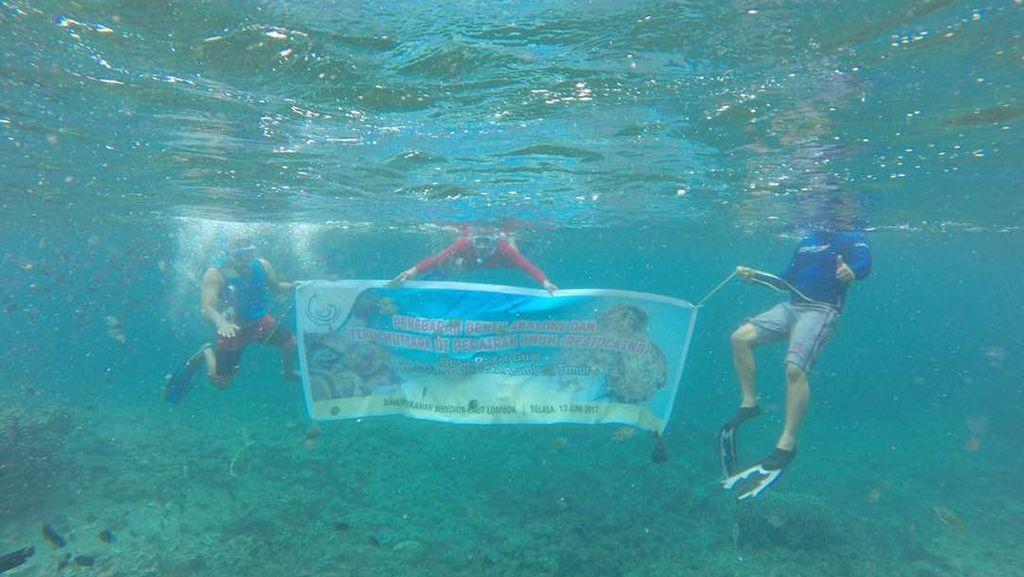 Cara Susi Selamatkan Stok Mutiara di Laut RI