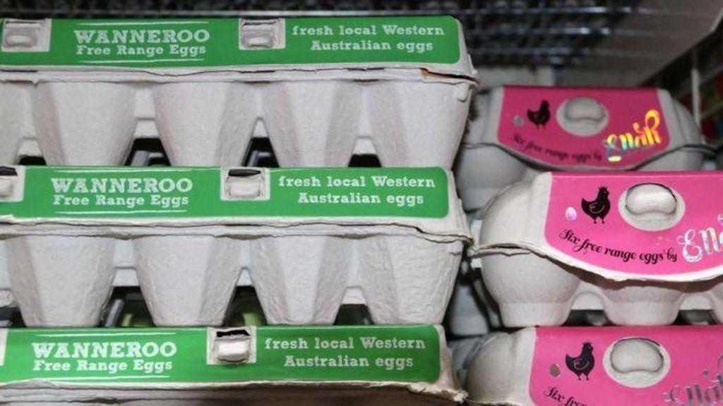 Jual Telur Organik Palsu, Perusahaan Australia Didenda Hampir Rp 10 M