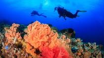 Foto: Sang Mantan Indonesia yang Jadi Tempat Menyelam Terbaik Asia