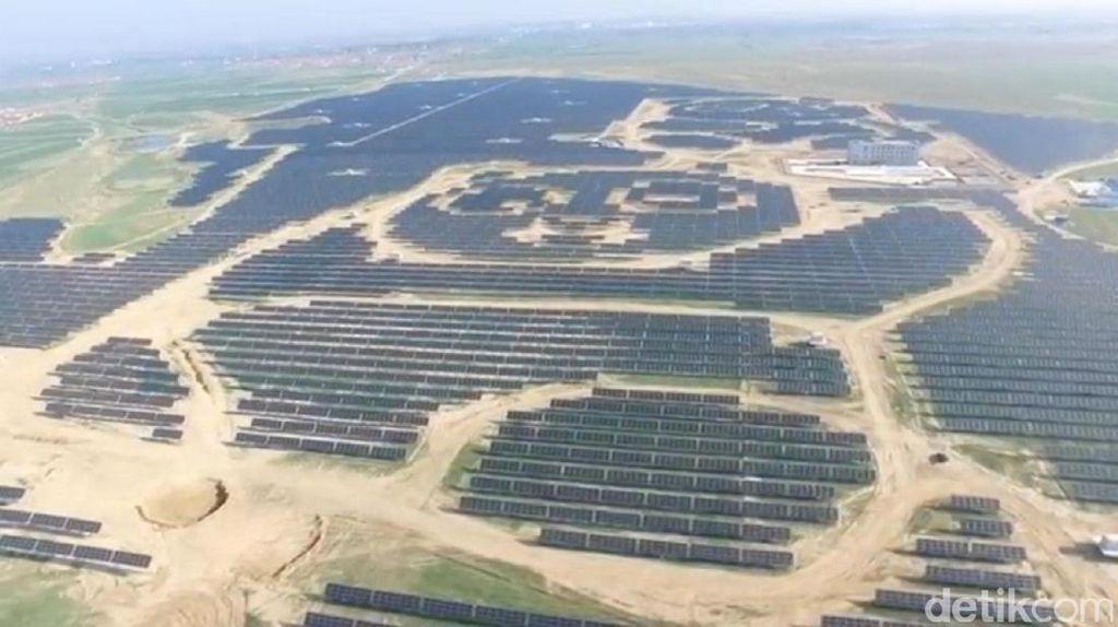 Gemes! Ada Panel Tenaga Solar Berbentuk Panda di China