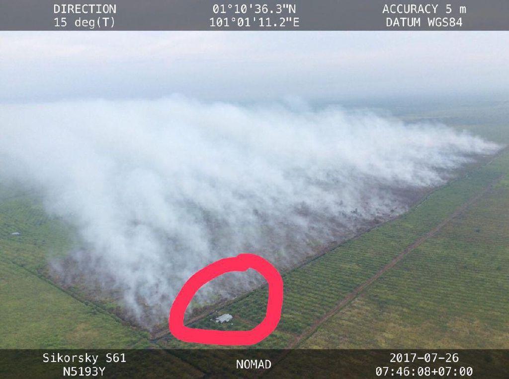 Kebakaran Lahan di Riau Disengaja dan Terstruktur, Ini Buktinya