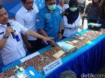 BNN Musnahkan 1,2 Kg yang Dibungkus di Kemasan Teh Hijau