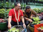 Saat Zulkifli Hasan Terkesan dengan Kampung Hijau Glintung Malang