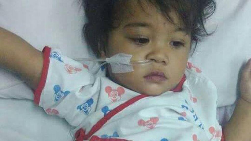 Jantung Bocor Sejak Lahir, Batita Pekalongan Ini Butuh Biaya Pengobatan