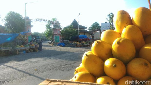 Penjual mangga podang menjamur di jalur Kediri-Jateng/
