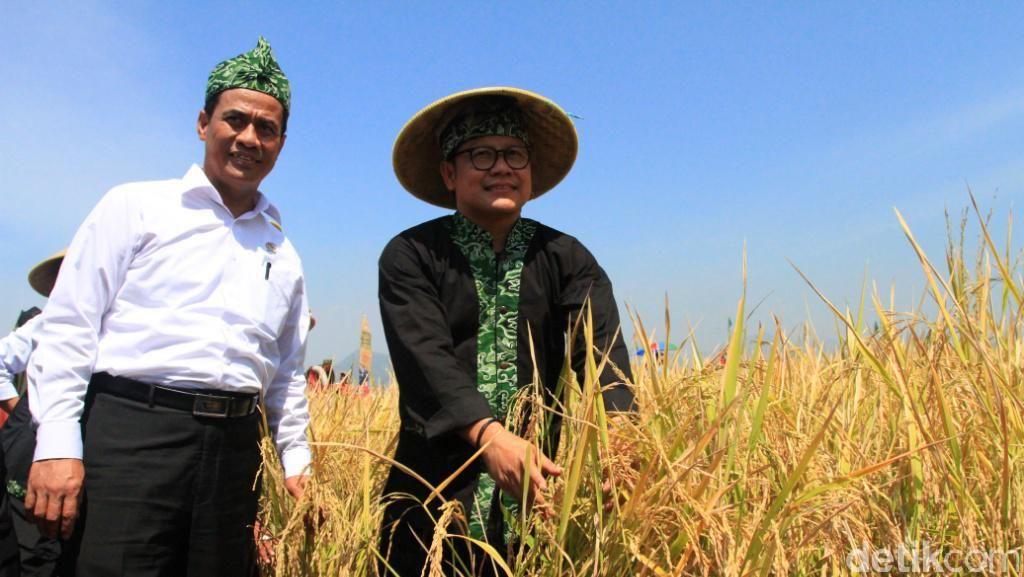 Cara Mentan Bikin Petani Hemat Biaya Produksi Hingga 50%