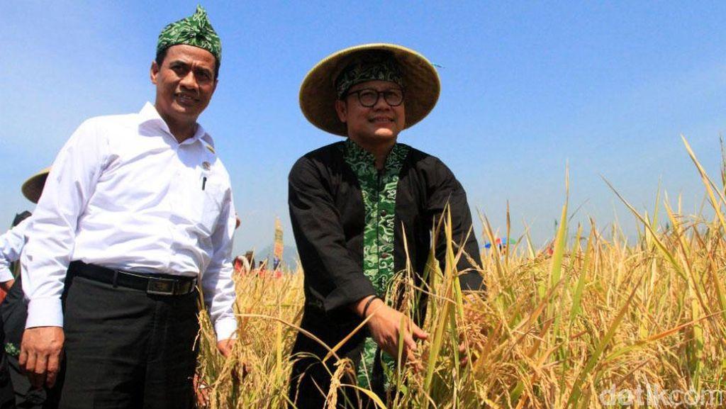 Modernisasi Pertanian, Cara Mentan Tekan Biaya Produksi Pangan